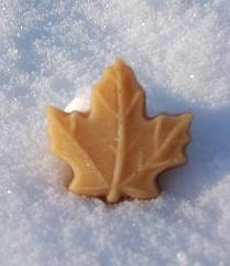 The Great Canadian Maple Sugar Leaf