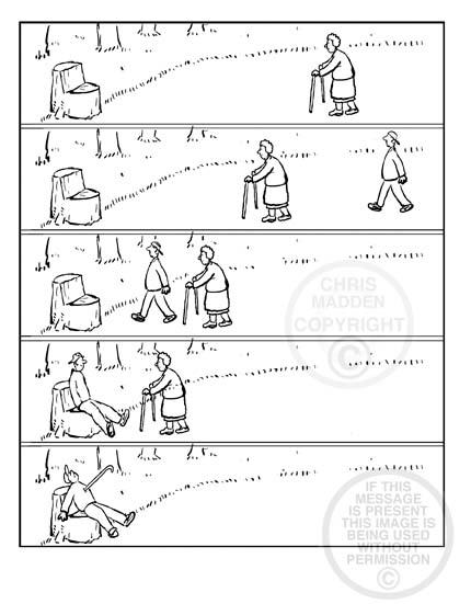 Walking-stick-cjmadden