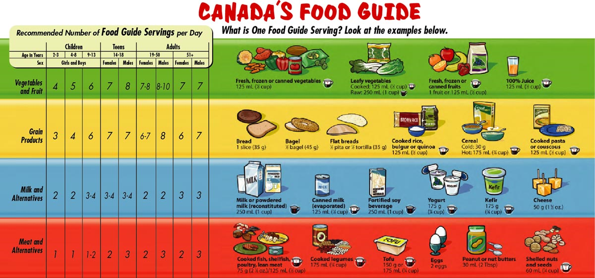 Difference Between Old Food Guide Pyramid And New One