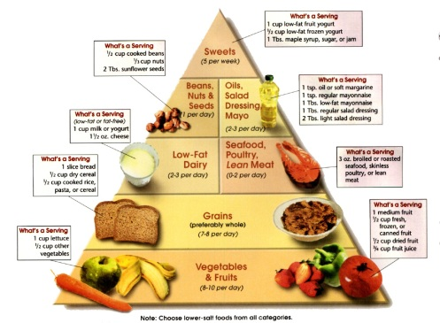The DASH Diet Pyramid