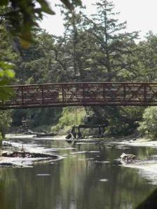 Heron Bridge at  Colquitz Creek