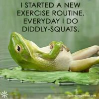 diddly squats